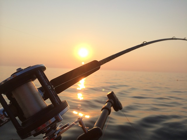Fishing Charters Florida